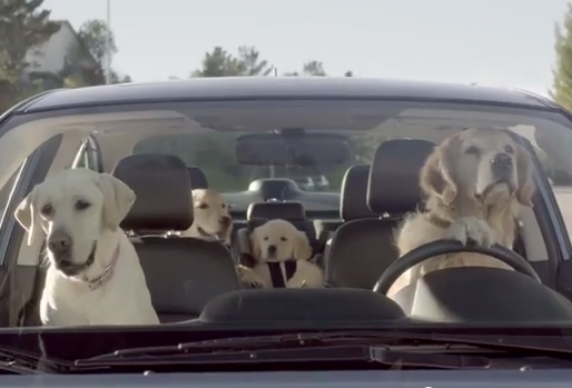 subaru-dog-tested-approved-commercials